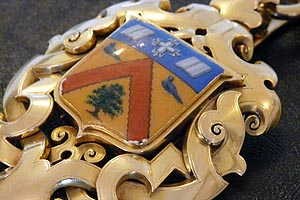 A close up picture of the Mayor's chain