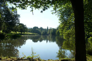 view between trees of Pittville lake