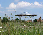 shelter built to look like a flying saucer in a grassy meadow