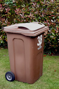 Brown wheelie bin on a lawn in front of a hedge