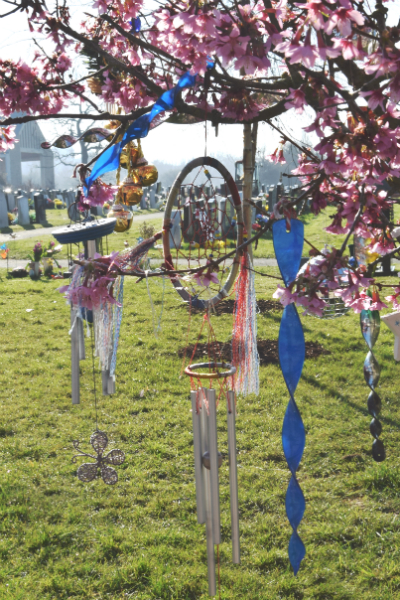 Windchimes in blossom tree at crematorium