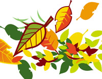 cartoon autumn leaves