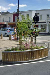 Planter on Suffolk Street