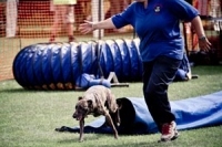 woman running with her dog at Paws in the Park, Cheltenham's dog show