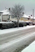 Ice covered residential street