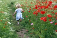 Girl running through wildflwoer urban meadow in Pittville Park