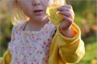 small girl holding a yellow leaf