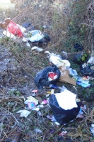 Rubbish and bin bags in a ditch