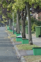 green recycling boxes and green wheelie bins